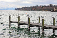 Starnberg See, Bayern, Deutschland lizenzfreie stockbilder