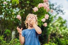 Starnuto del ragazzino nel parco contro lo sfondo di un albero di fioritura Allergia al concetto del polline immagine stock libera da diritti