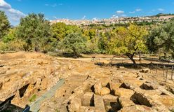Starożytny Grek ruiny w dolinie świątynie blisko Agrigento, Sicily -, Włochy Obrazy Royalty Free