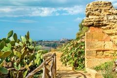 Starożytny Grek ruiny w dolinie świątynie blisko Agrigento, Sicily -, Włochy Fotografia Stock