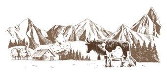 staro?ytne stworzenia farmy mleczarskim krajowych tradycji pracuj? w szczeg?lno?ci turyst?w Krowy pasaj? w ??ce Wiejski krajobraz ilustracja wektor