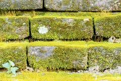 starożytny mur obraz stock