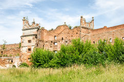 Staroselskiy castle in Stare Selo in the Lviv. The old ruins of the collapsed walls with gates and windows Staroselskiy castle in Stare Selo in the Lviv region stock image