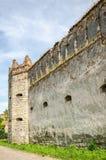 Staroselskiy kasztel w gapieniu Selo w Lviv Zdjęcia Royalty Free