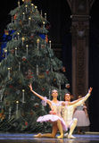 Starring curtain call -The Ballet  Nutcracker Stock Photo