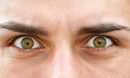 Starring eyes Stock Images