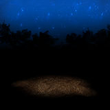 Starry background. An illuminated patch of ground with a starry sky and black tree silohuettes in the background Royalty Free Stock Images