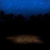starry bakgrund Royaltyfria Bilder