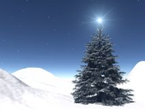 Starry Christmas. A very realistic Christmas tree in a starry night Royalty Free Stock Images