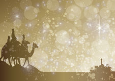 Starry kings Royalty Free Stock Photography