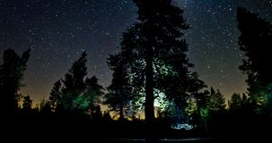 Night Sky Over Treetops stock footage