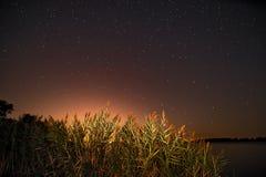 starry natt Arkivfoton