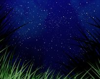 Starry night. Sky with a grass fringe Stock Images