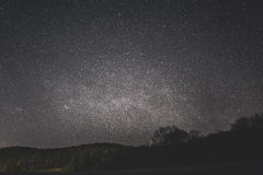 Starry Night Above the Silhouette of Trees and Land Form Royalty Free Stock Photos