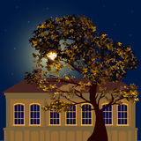 Starry night in the city Royalty Free Stock Photography