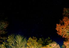 The starry Night on a fall day. The starry night on fall day viewed through the opening of the trees stock photo