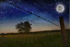 Starry Night and Farmers Fence Royalty Free Stock Photography