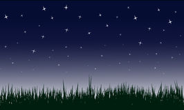 Starry night  illustrations Royalty Free Stock Photos