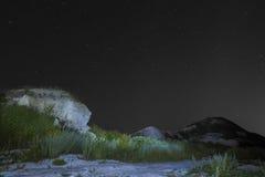 Starry night landscape.