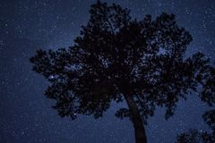 Starry Night. A starry night over Table Rock State Park Stock Photos