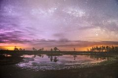 Starry night sky in a forest. Near the lake royalty free stock photo