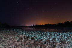 Starry night, the stars over the lake Royalty Free Stock Images