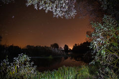 Starry night, the stars over the lake, green grass, trees illuminated by a flashlight Royalty Free Stock Photos