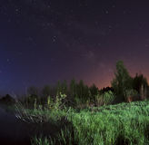 Starry night, the stars over the lake, green grass, trees illuminated by a flashlight Stock Image