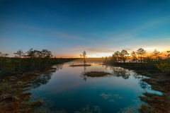 Starry night at a swamp Stock Photos