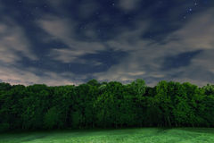 Starry Night, White clouds, many stars, green forest. The edge of the forest. Stock Images
