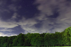 Starry Night, White clouds, many stars, green forest. The edge of the forest. Stock Photography