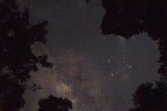 starry sky royaltyfri bild