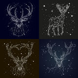 Starry sky constellation deer Royalty Free Stock Images