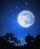 Starry Sky Stock Image