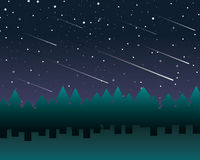 Starry sky. And meteor shower in a pine trees forest vector draw stock image