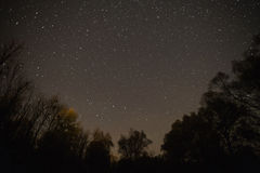 Starry sky, night photography, astrophotography, tree silhouettes stock photography