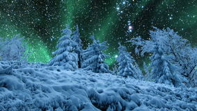 Starry sky and northern lights stock video footage