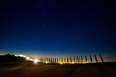 Starry Sky over the Cypress Alley Royalty Free Stock Images