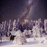 Starry sky and a tree in frost at the beautiful house in the woods in midwinter Royalty Free Stock Image