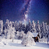 Starry sky and a tree in frost at the beautiful house in the woods in midwinter. Royalty Free Stock Image