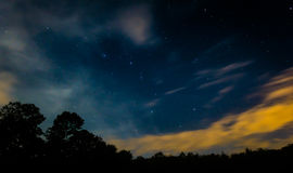 Starry Sky with Trees and Some Clouds. Starry Sky with some Trees and Some Clouds Stock Photo