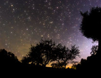 Starry sky. In the village Stock Photo