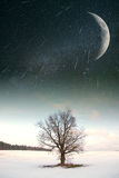 Starry sky in winter Royalty Free Stock Image