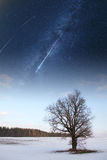 Starry sky in winter Royalty Free Stock Images