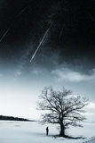 Starry sky in winter Stock Images