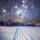 Starry sky in winter snowy night. Winter background with some soft highlights and snow flakes royalty free stock photo