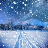 Starry sky in winter snowy night. Winter background with some soft highlights and snow flakes royalty free stock images