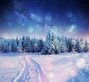 Starry sky in winter snowy night. fantastic milky way. In the New Year`s Eve. The Milky Way is a fantastic New Year`s Eve. Bokeh light effect, soft filter Stock Image