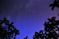 Starry Starry Night Stock Image