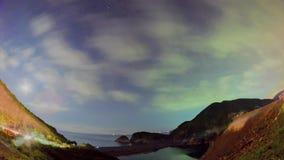 Starry Summer Night Sky Timelapse stock footage
